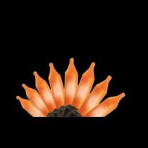 100-Light Orange Mini String Light Set