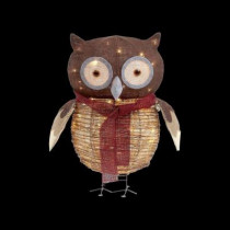 24 in. Pre-Lit Grapevine and Burlap Owl