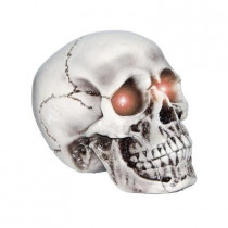 Light-Up Skull