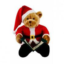 20 in. Story Telling Christmas Bear