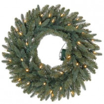24 in. Battery Operated Meadow Artificial Wreath with 35 Clear LED Lights
