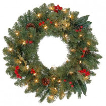 24 in. Winslow Artificial Wreath with 35 Clear Lights