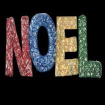 15.5 in. 150-Light Spun Glitter Noel Silhouette