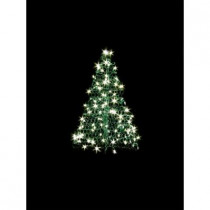 3 ft. Indoor/Outdoor Pre-Lit LED Artificial Christmas Tree with Green Frame and 160 Clear Lights