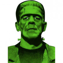 Frankenstein Window Cover